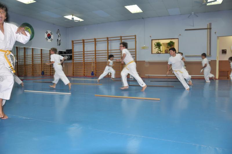 aikido-fi-d-010_800x531