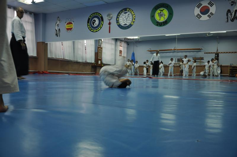 aikido-fi-d-033_800x531