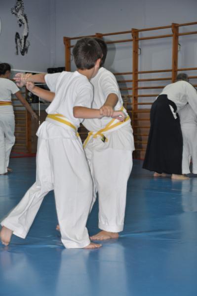 aikido-fi-d-042_399x600