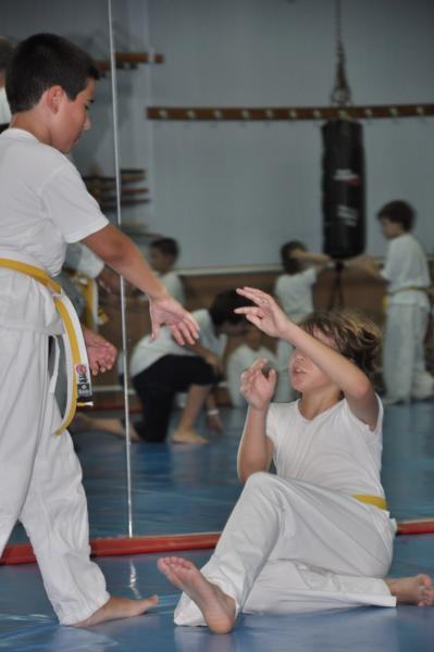 aikido-fi-d-043_399x600