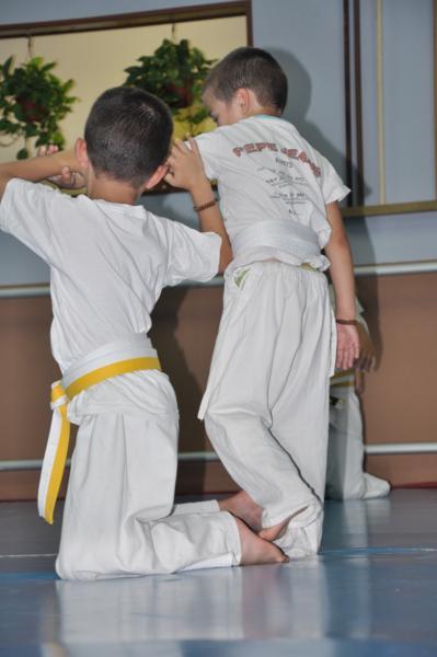 aikido-fi-d-052_399x600