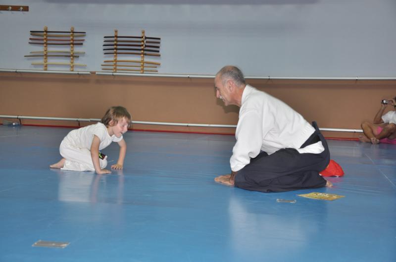 aikido-fi-d-110_800x531