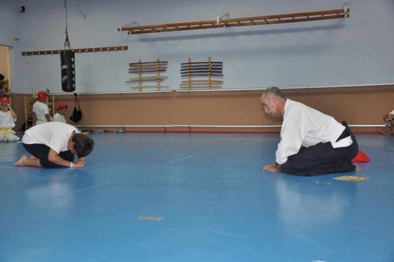 aikido-fi-d-120_800x531