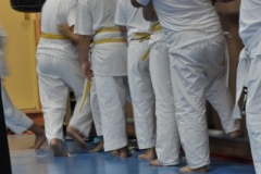 aikido-fi-d-009_399x600