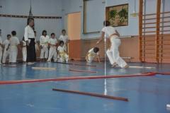 aikido-fi-d-011_800x531