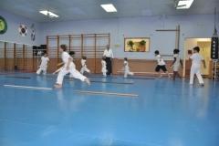 aikido-fi-d-012_800x531