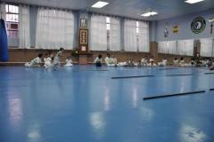aikido-fi-d-017_800x531