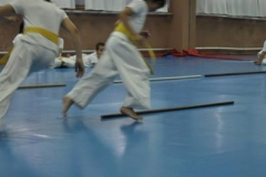 aikido-fi-d-020_399x600