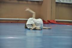 aikido-fi-d-029_800x531