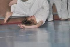 aikido-fi-d-034_399x600