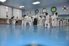 aikido-fi-d-036_800x531