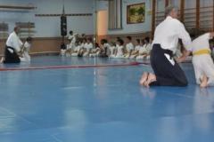 aikido-fi-d-046_399x600