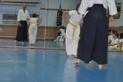 aikido-fi-d-047_399x600