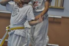 aikido-fi-d-051_399x600