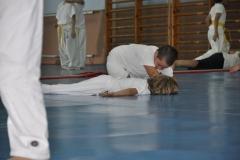 aikido-fi-d-060_800x531