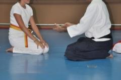 aikido-fi-d-069_399x600