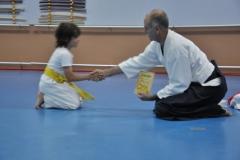 aikido-fi-d-071_800x531