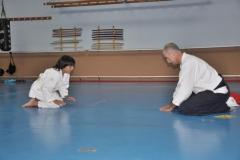 aikido-fi-d-080_800x531