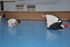 aikido-fi-d-095_800x531