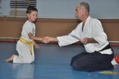 aikido-fi-d-096_800x531