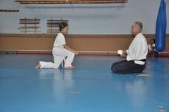 aikido-fi-d-102_800x531