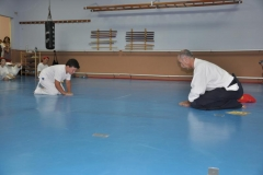 aikido-fi-d-114_800x531