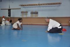 aikido-fi-d-118_800x531
