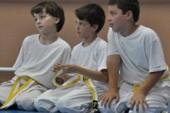 aikido-fi-d-143_800x600